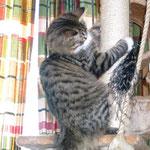 Camillo 7 Monate alt