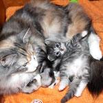Diana 4 Wochen alt mit Mama Olympia
