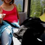 Eurasiertreffen in Osttirol in Gondelbahn