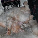 Whitney 5 Monate alt