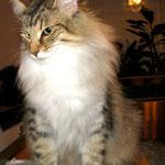Amelie 3 Jahre und 9 Monate alt