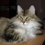 Amelie  5 Jahre  alt