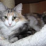 Olympia  1 Jahr und 9 Monate alt
