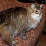 Amelie 13 Jahre und 7 Monate alt