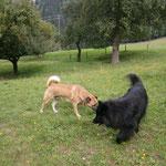 Urlaub in Kärten, Leas Freund Bennie