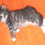Diana 4 Wochen alt