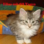 Elias 3 Monate alt