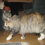 Fabricia 2 Jahre und 10 Monate alt mit Beryl