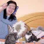 FLint und Figaro 3 Monate alt