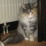 Fabricia 2 Jahre und 10 Monate alt