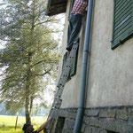 Suche und Reinigung von Fensterläden