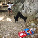9 Monate alt in der Waldmühle bei Mödling mit Mudi Jessy