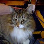 Athina 2 Jahre alt