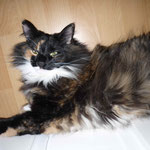 Lucy 4 Monate alt