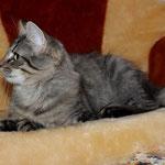 Berenike 16 Wochen alt