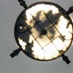 Zwergfledermäuse in einem Beleuchtungskörper