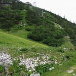 Aufstieg zum Hochkarschacht bei Göstling an der Ybbs