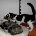 3 Monate, Froya 4 Monate alt