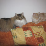 Amelie 10 Jahre und 8 Monate alt mit Whitney 19 Wochen alt
