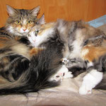 Olympia  4 Jahre  und 8 Monate alt mit Töchterchen Yasmine