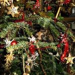 Frøya 8 Monate alt im Weihnachtsbaum......