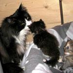 Dime 3 Jahre und 11 Monate alt mit ihren Babies FLint und Fantasy