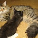 Amelie 1 Jahr und 10 Monate alt mit Boris 72 Tage alt