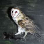 Silverowl 80x60 cm Oil/Canvas 2012