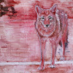 Coyote 140x120 cm Oil/Canvas 2012