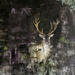 Nightdeer 6 105x140 cm Oil/Canvas 2011