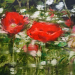 Poppies 3 50x60 Oil/Canvas 2014