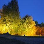 Lichtklangnacht
