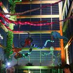 Lichtklangnacht Holländischer Garten