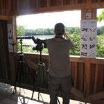 Vogelbeobachtungshütte am Schlämmsee nördlich von Trieb