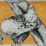 Fasan, Studie (2016, Miixed Media/Papier, 29x42 cm)