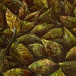 枯葉のケルビム(1994年) F3号