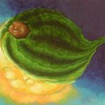 日食瓜虫(1994年) F8号