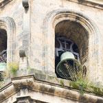 Natur am Glockenturm