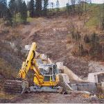 Forstliches Projekt 2002