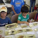 博物館の封入標本を見る子ども達