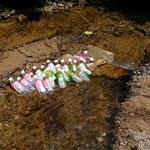 JTさんからの差し入れ。川で冷やして美味しく飲みました。