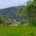 Blütenumkränztes Neckargemünd