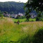 Die Waldhilsbacher Wiesen  (PeWe)