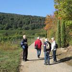 Auf dem Weg in den Weinberg - Foto Ingo P.