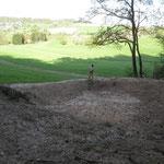 Noch leerer , neuer Teich (5)