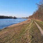 Am Rhein-Strom - Foto Hartmut Idler
