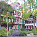Altstadt von Neustadt - Foto P. Welker