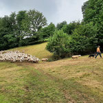 Ländliche Idylle in Lobach - Foto I. Pedal