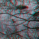 Die rotkopfigen Küken des Blässhuhns    © P. W.