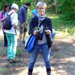 Kleine Hilfe gegen Verbuschung: Eiche und Ahorn werden ausgerissen - Foto P. Welker